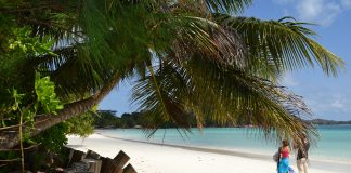 Have a honeymoon in the Seychelles!